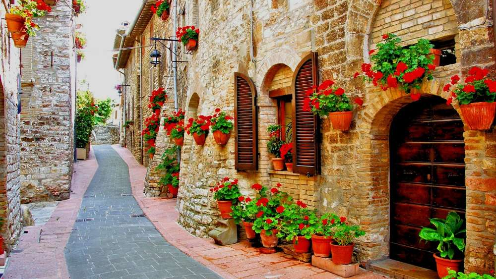 Flower lined street in the town of Assisi, Italy wallpaper