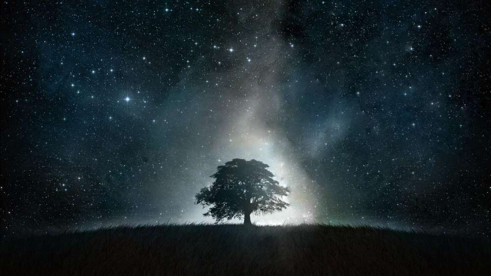 Lone tree under the starry night sky wallpaper
