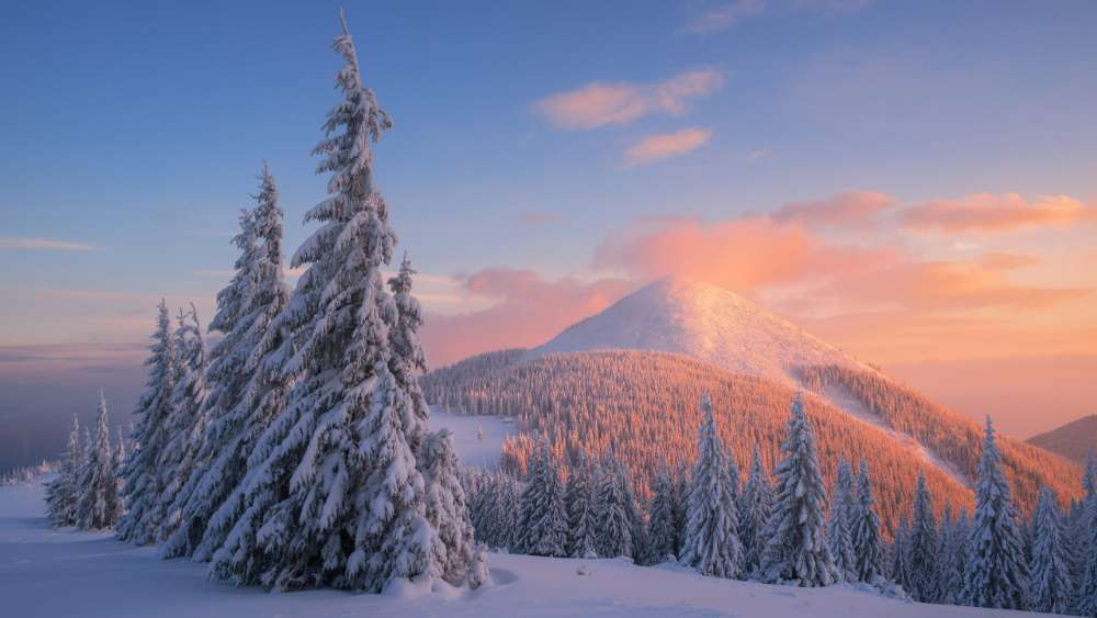 Carpathians at wintertime wallpaper