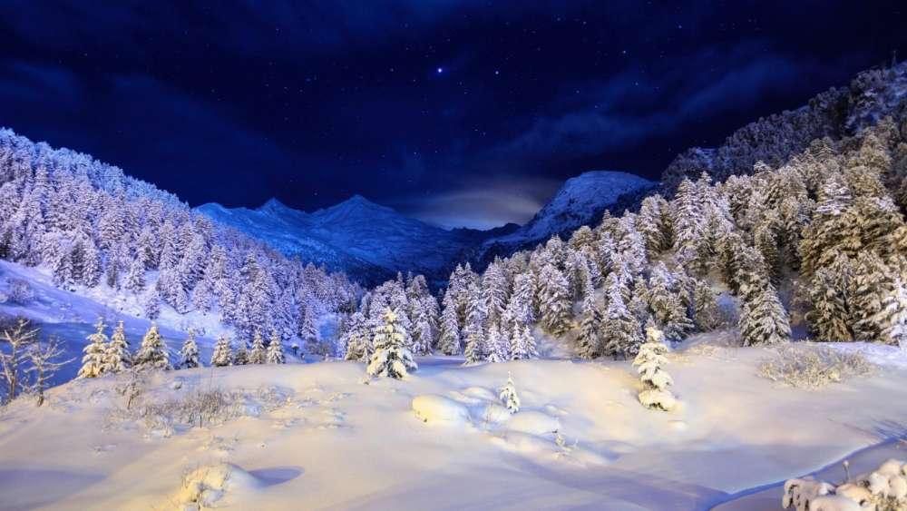 Winter night ✨ wallpaper