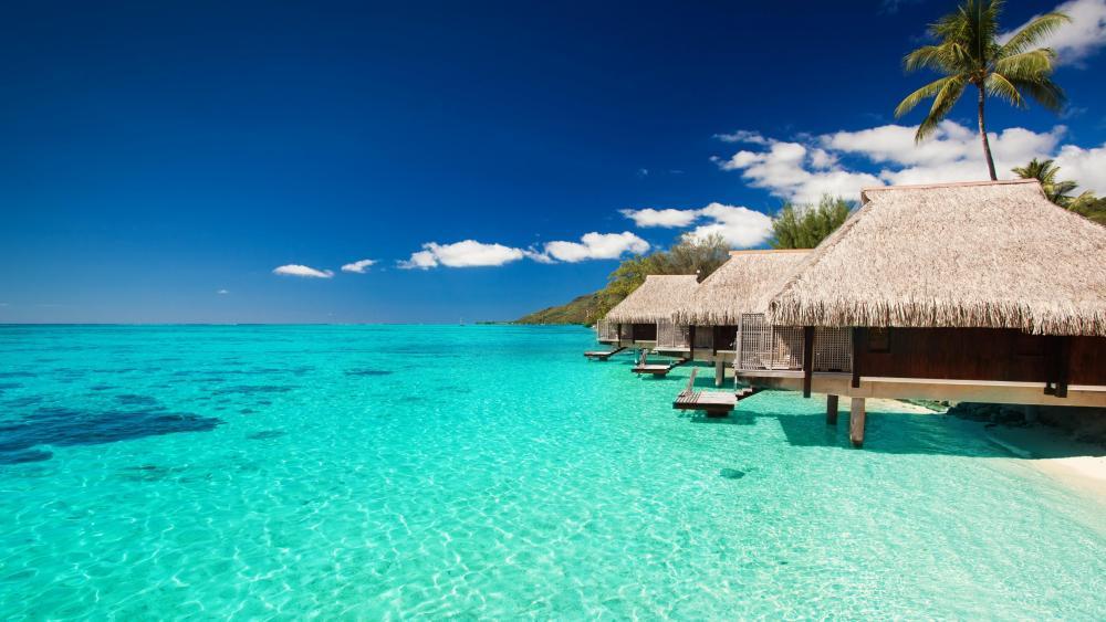 Beach bungalows in Maldives wallpaper