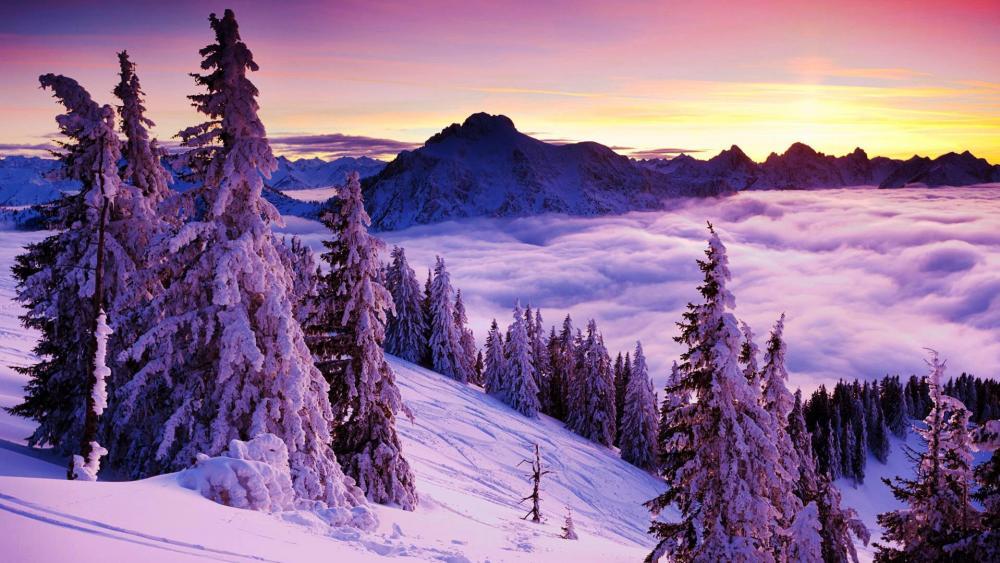 Beautiful winter landscape wallpaper