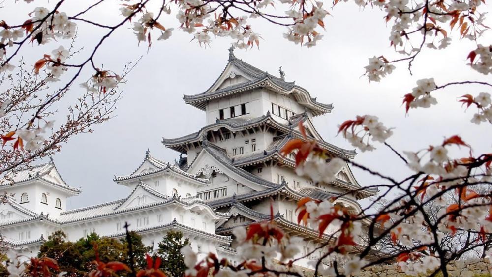 Himeji Castle - Japan wallpaper