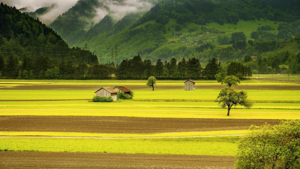 Swiss Alps landscape wallpaper