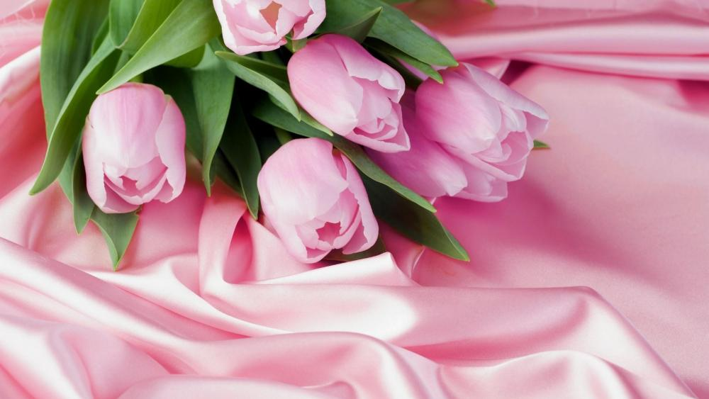 Pink tulip bouquet wallpaper