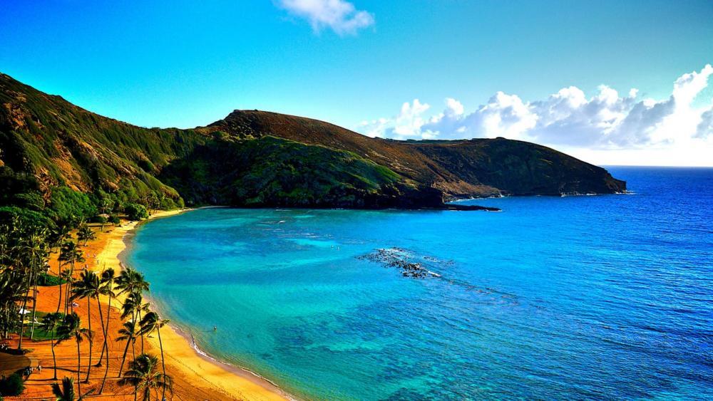 Hawaii coastline wallpaper