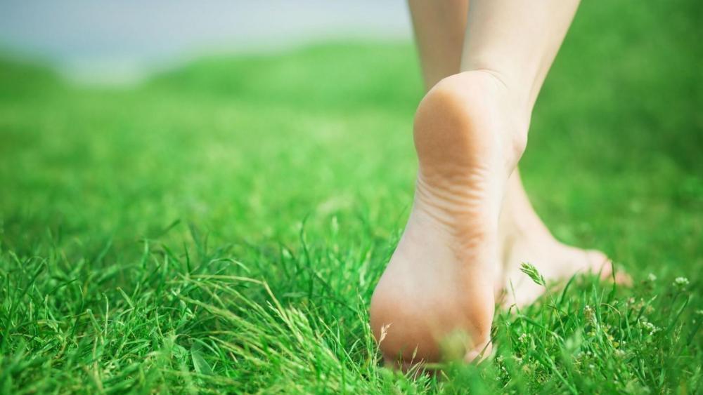 Feet in the soft grass wallpaper