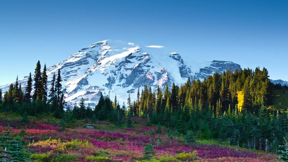 Nisqually Glacier landscape wallpaper