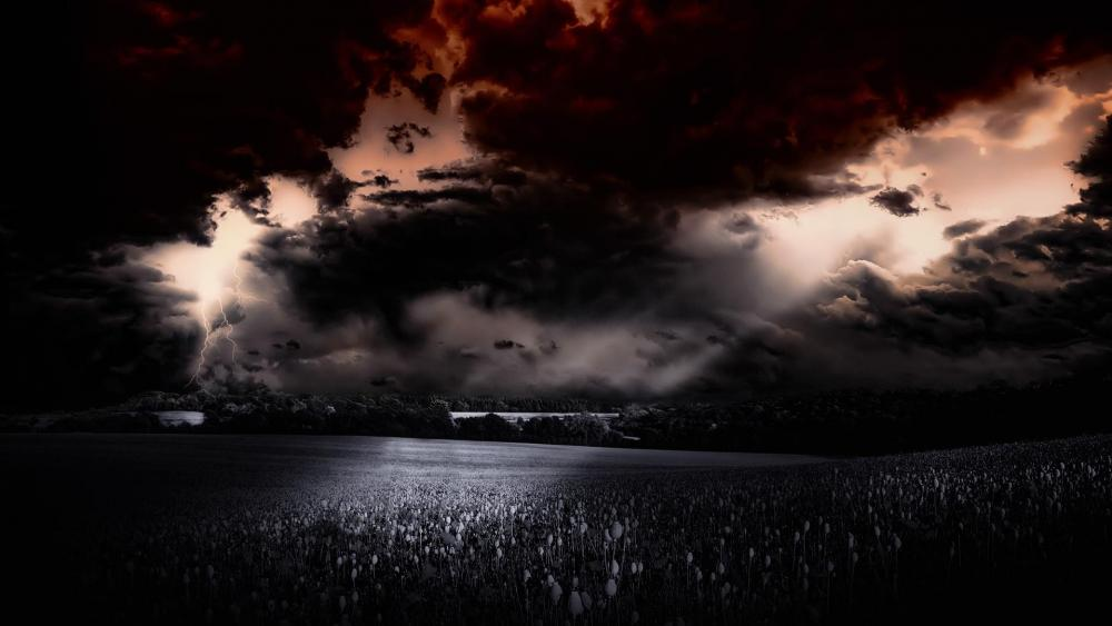 Thunderstorm above the field ️ wallpaper
