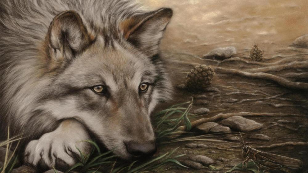 Wolf drawing wallpaper