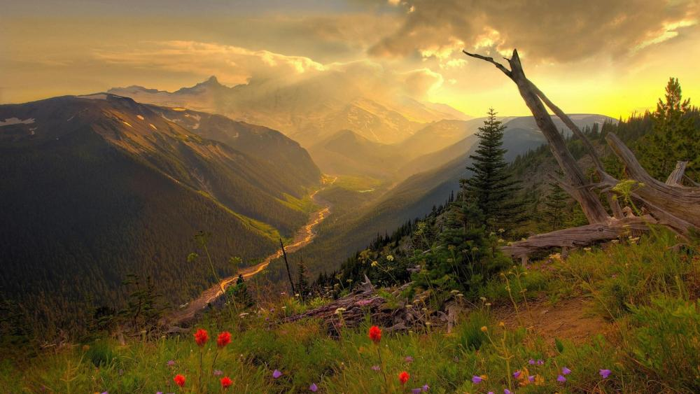 Mountain landscape in the morning sunrise  wallpaper