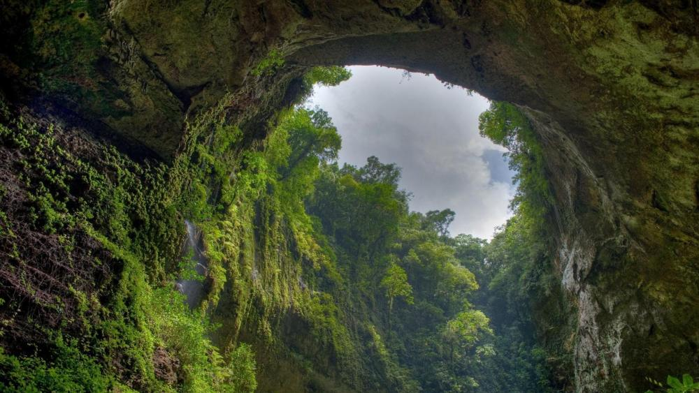 Cave in El Yunque National Forest wallpaper