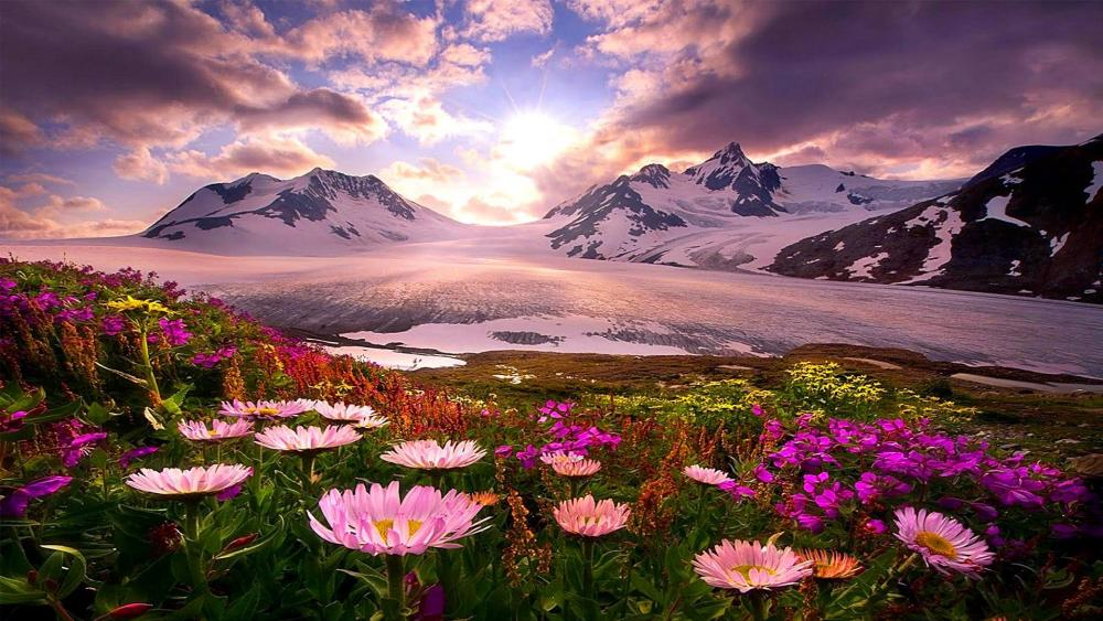 Spring in Alaska wallpaper