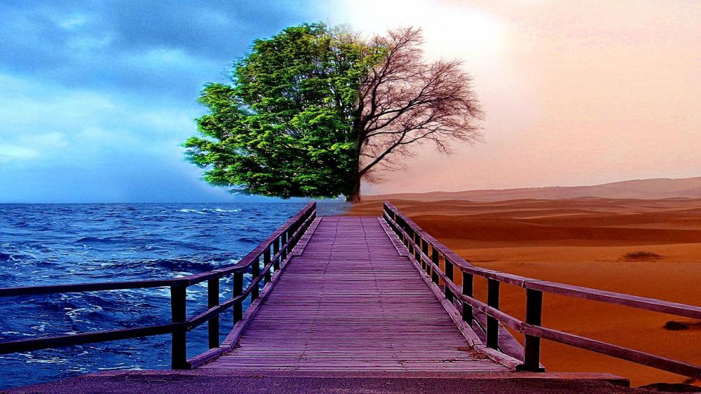 Pier And Tree Between Sea And Desert wallpaper