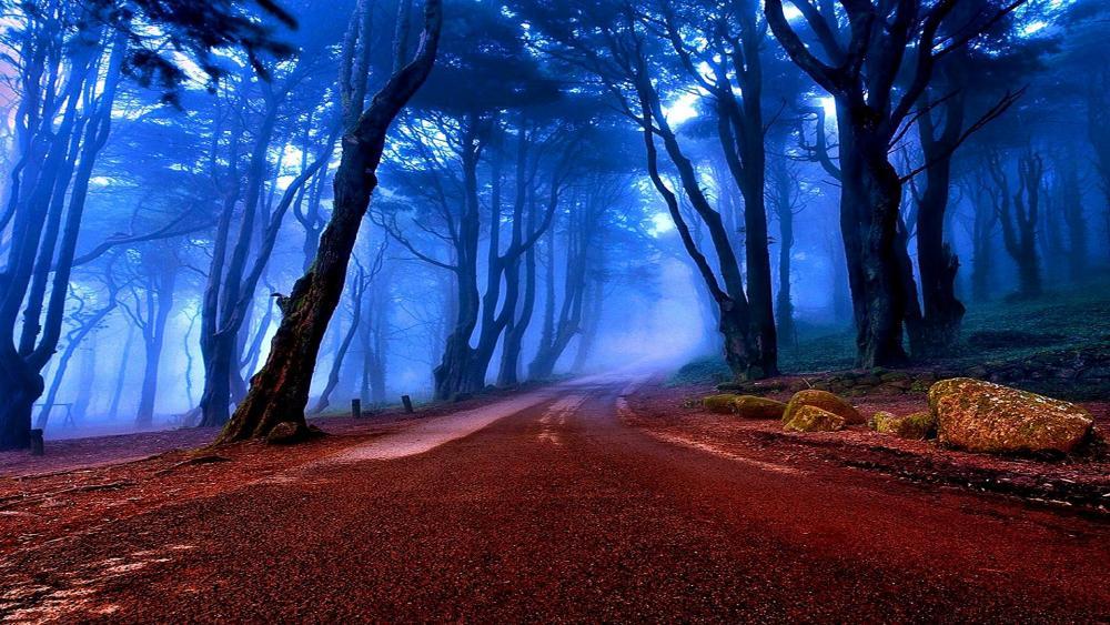 Country roadside in twilight wallpaper