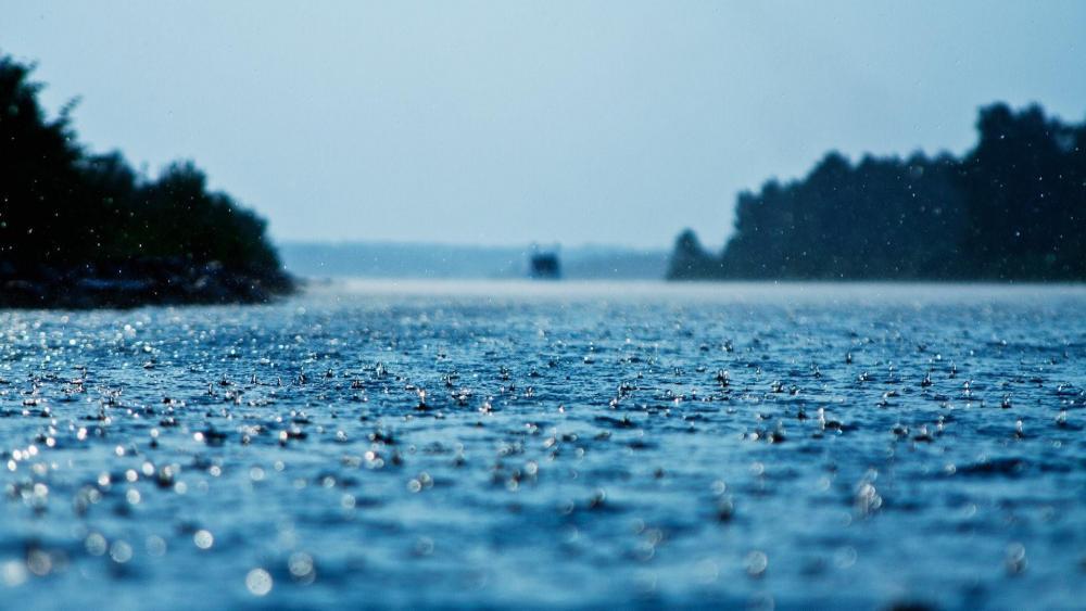 Rain Drops  wallpaper