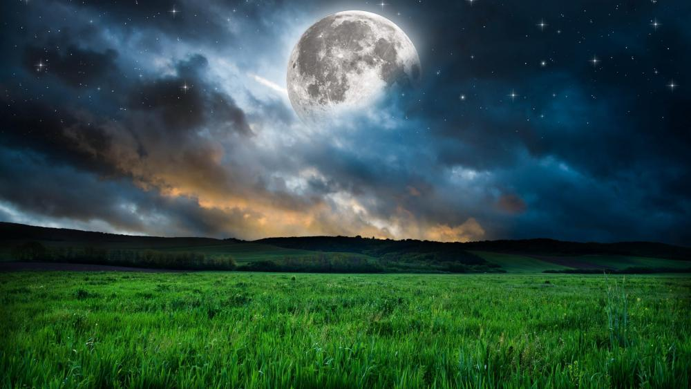 Full moon above the meadow wallpaper