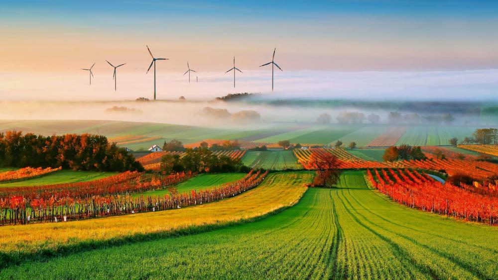 Windmills in the autumn field wallpaper