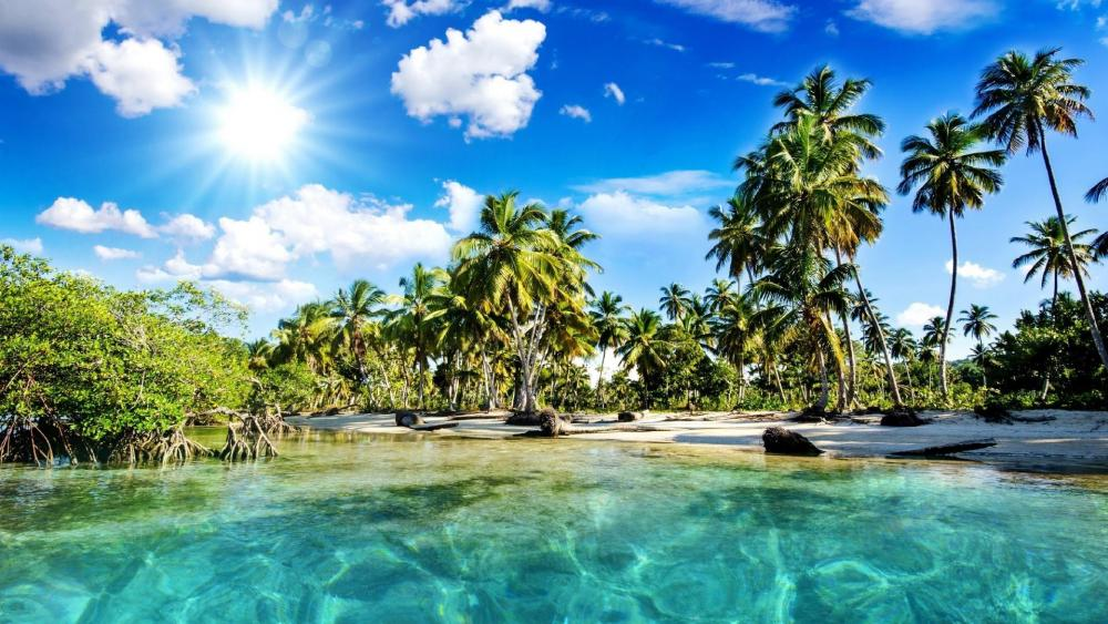 Kerala lagoon with palms, India wallpaper