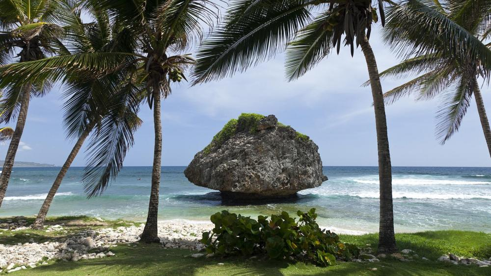 Mushroom rock - Bathsheba Beach, Barbados wallpaper