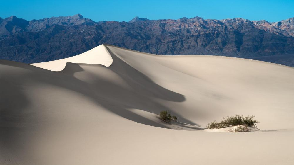 Mesquite Flat Sand Dunes -  Death Valley National Park, California, United States wallpaper