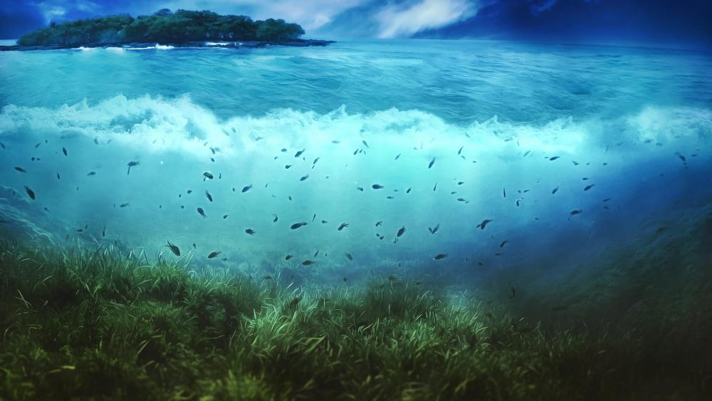 Landscape and underwater  wallpaper