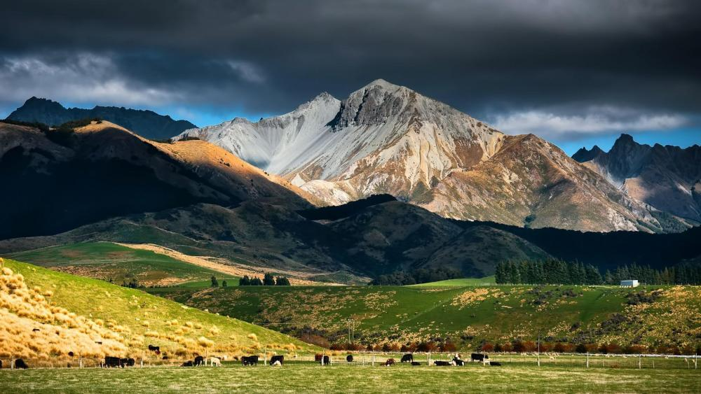 New Zealand landscape wallpaper