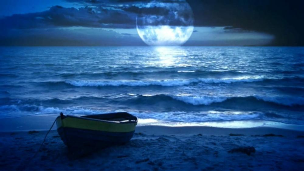 Full moon over the sea  wallpaper