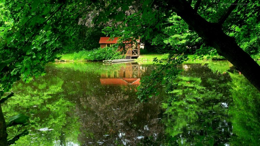 Chalet at the pond wallpaper