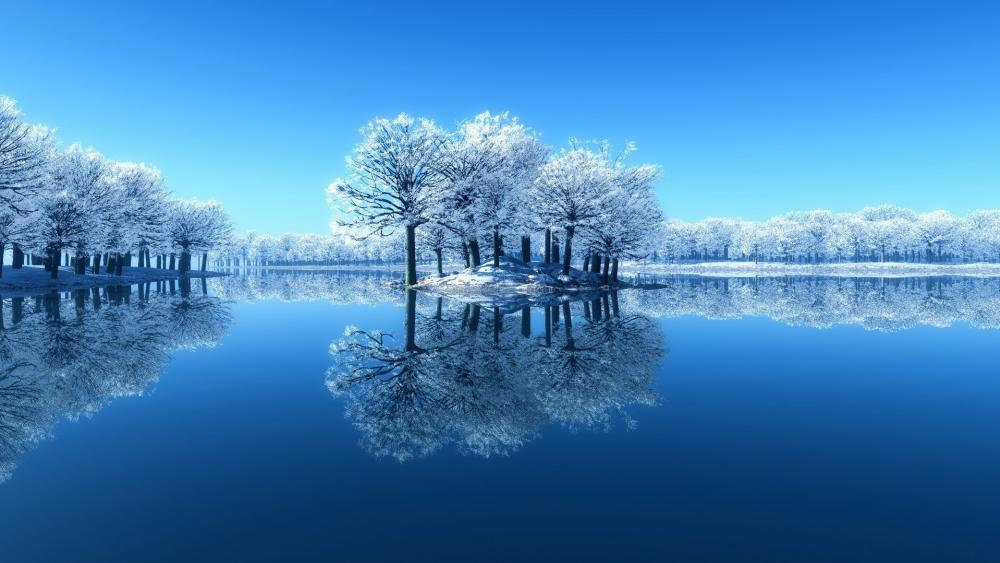 Frozen trees reflected in the calm water wallpaper