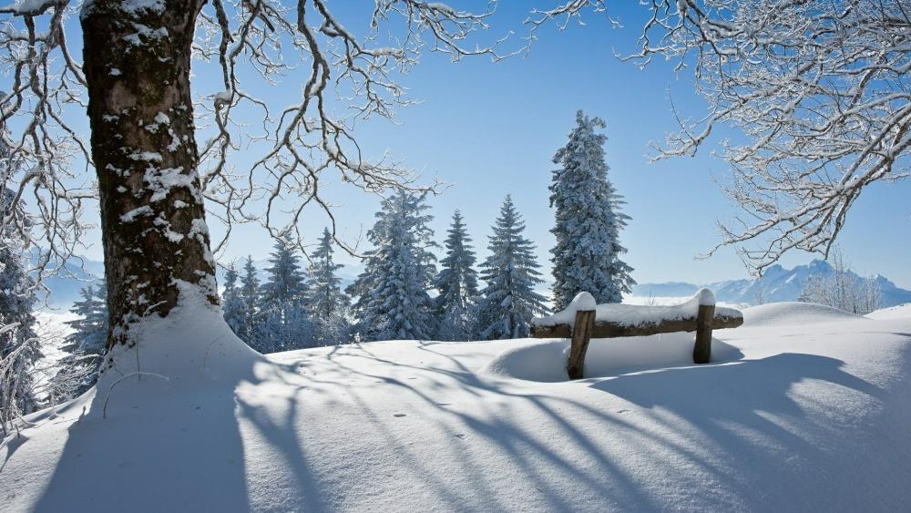 Snowy winter landscape ️❄️ wallpaper