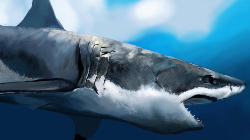 Great white shark - Painting art wallpaper