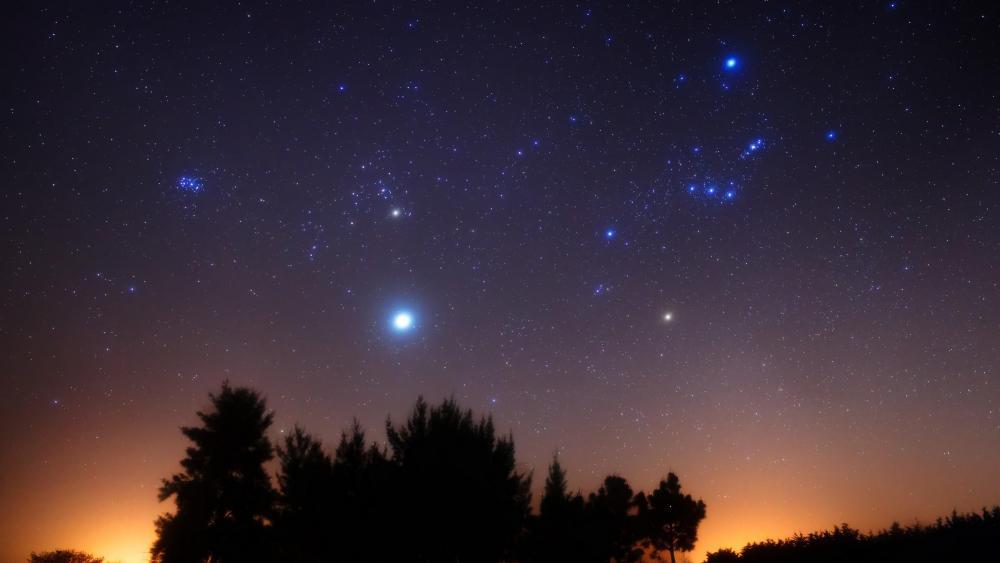 Stars shining on the night sky wallpaper