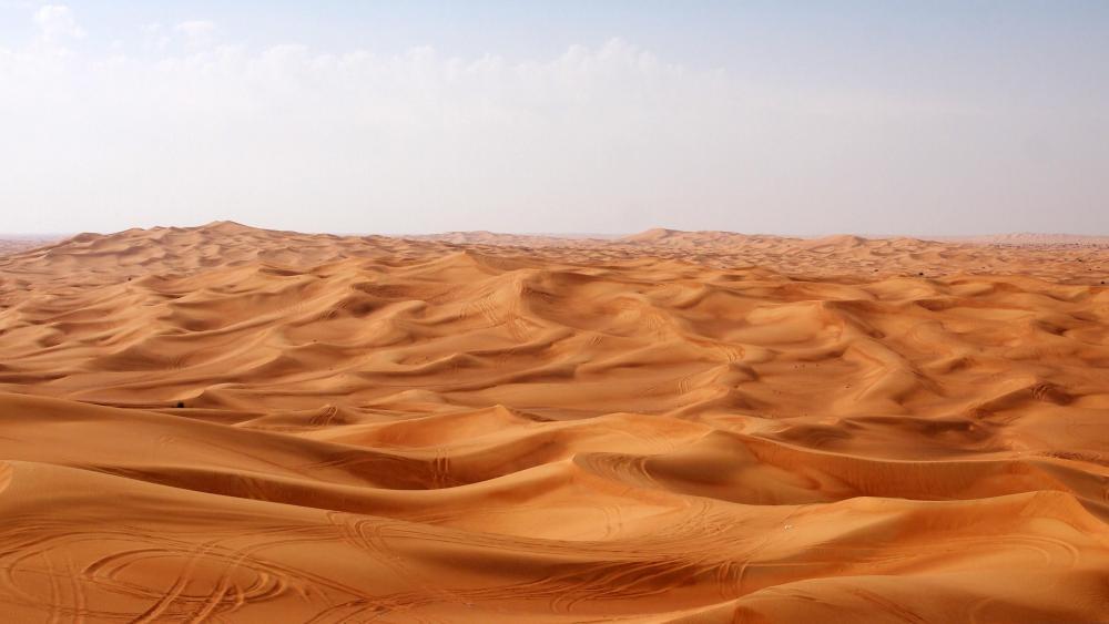 Desert landscape wallpaper