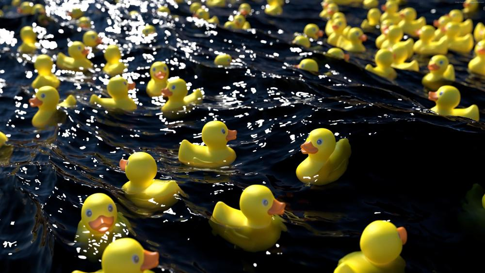 Rubber duck race wallpaper