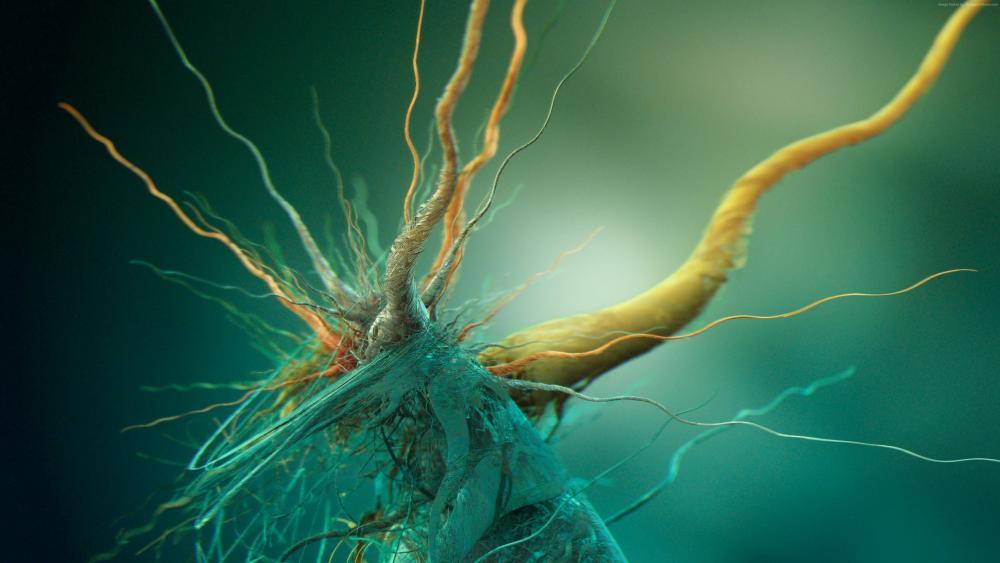 Growth of Cubic Bacteria - Digital art wallpaper