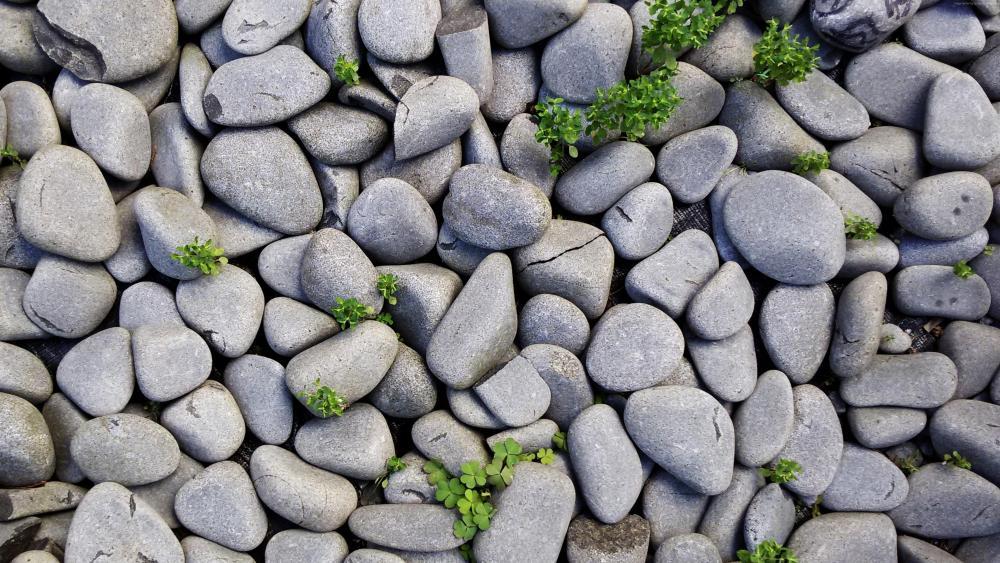 Grey stones wallpaper