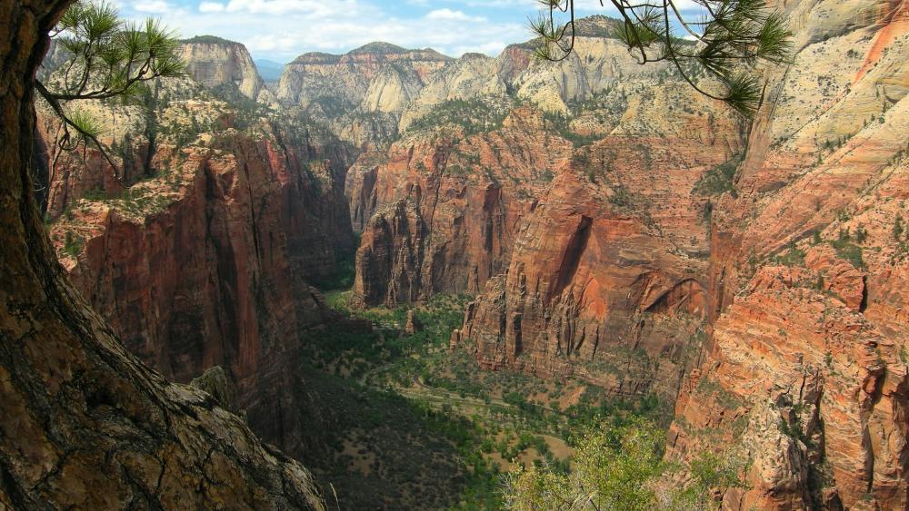 Zion Canyon - Zion National Park, Utah wallpaper