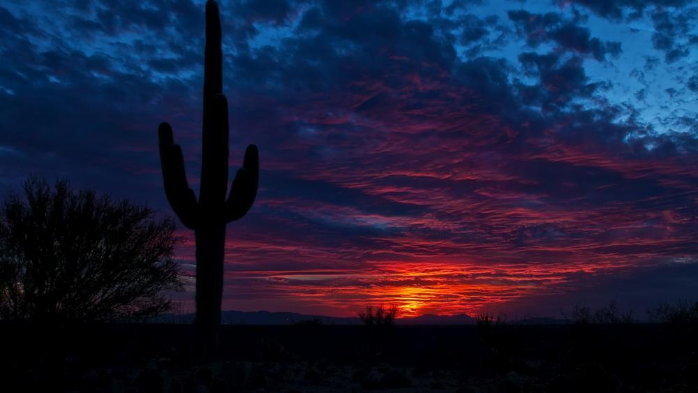 Sunset in Tucson, Arizona wallpaper