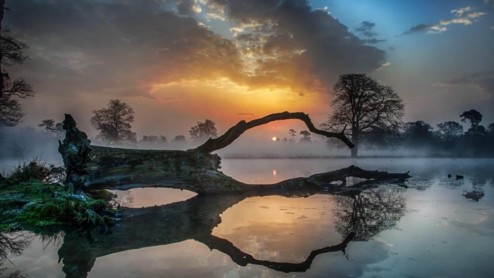 Dusty sunset reflected in the lake wallpaper