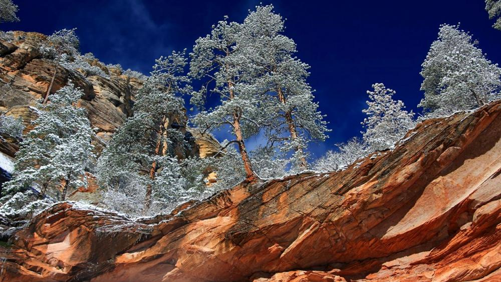 Oak Creek Canyon - Arizona wallpaper