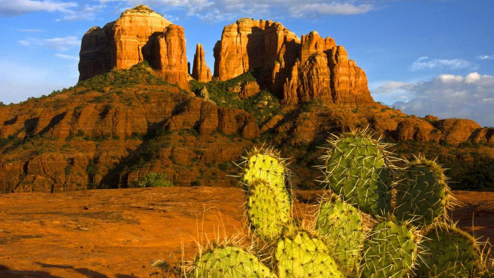 Cathedral Rock in Sedona, Arizona wallpaper