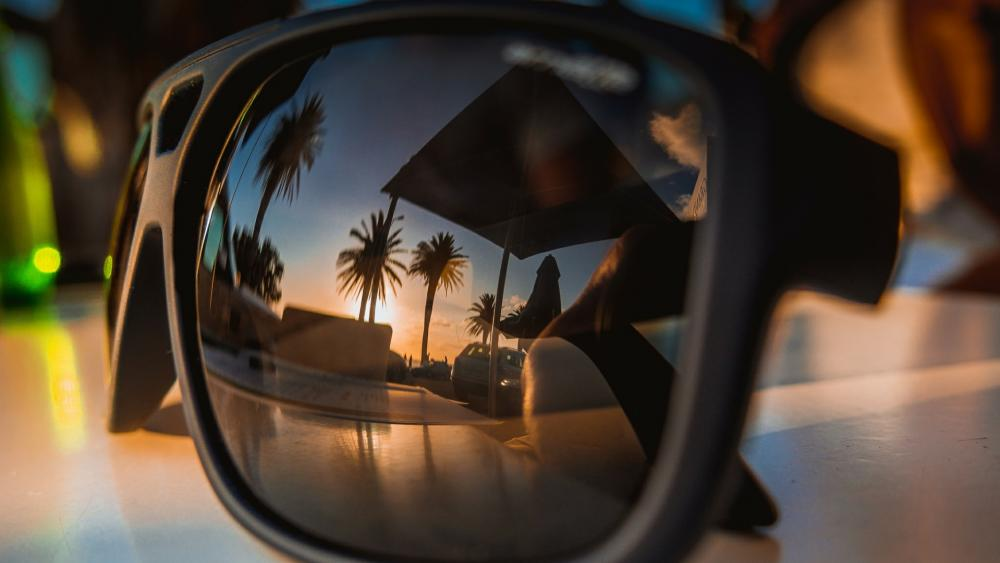 Palm trees reflected in the sunglasses wallpaper