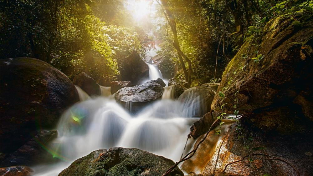 Waterfall Bridal Veil, Pernambuco, Brazil wallpaper