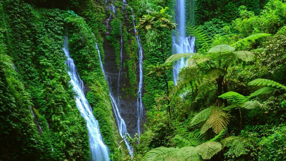 Madakaripura Waterfall - Bromo Tengger Semeru National Park, Indonesia wallpaper