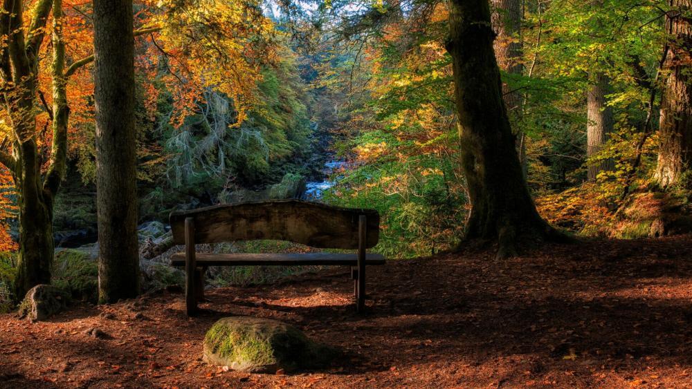 Cairngorms National Park, Scotland wallpaper