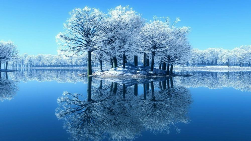 Snowy trees reflected in the lake wallpaper