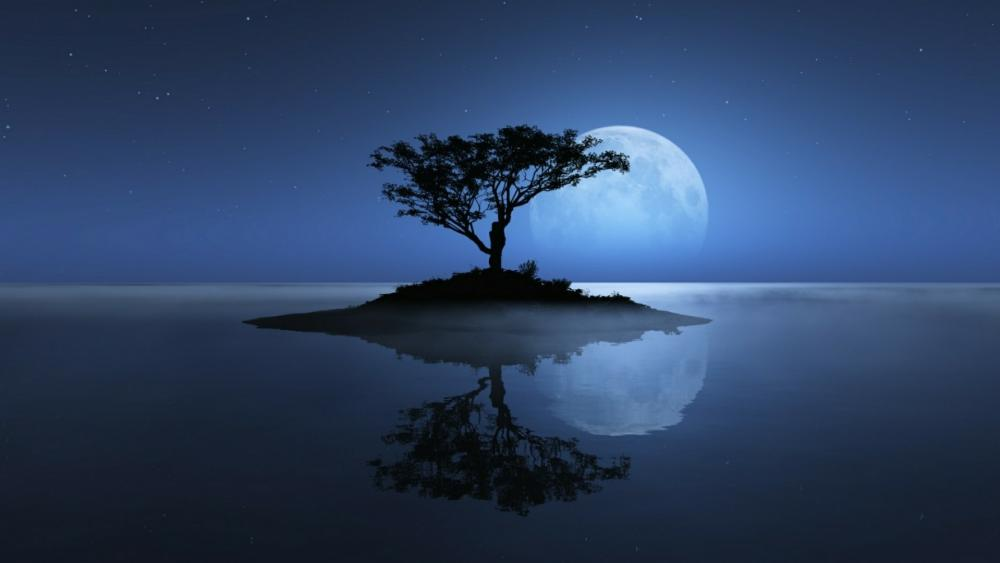 Lone tree with the full moon reflected in the night lake wallpaper