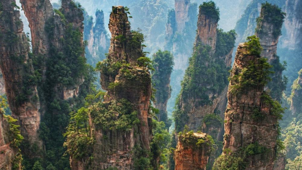 Tianzi Mountain - Zhangjiajie National Forest Park, China wallpaper