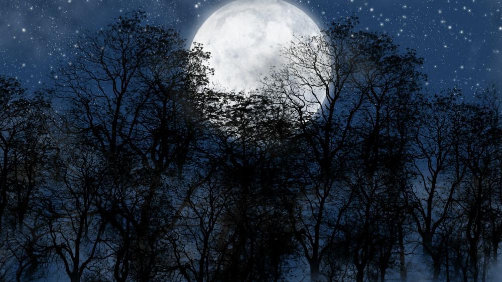 Full moon on the starry sky wallpaper